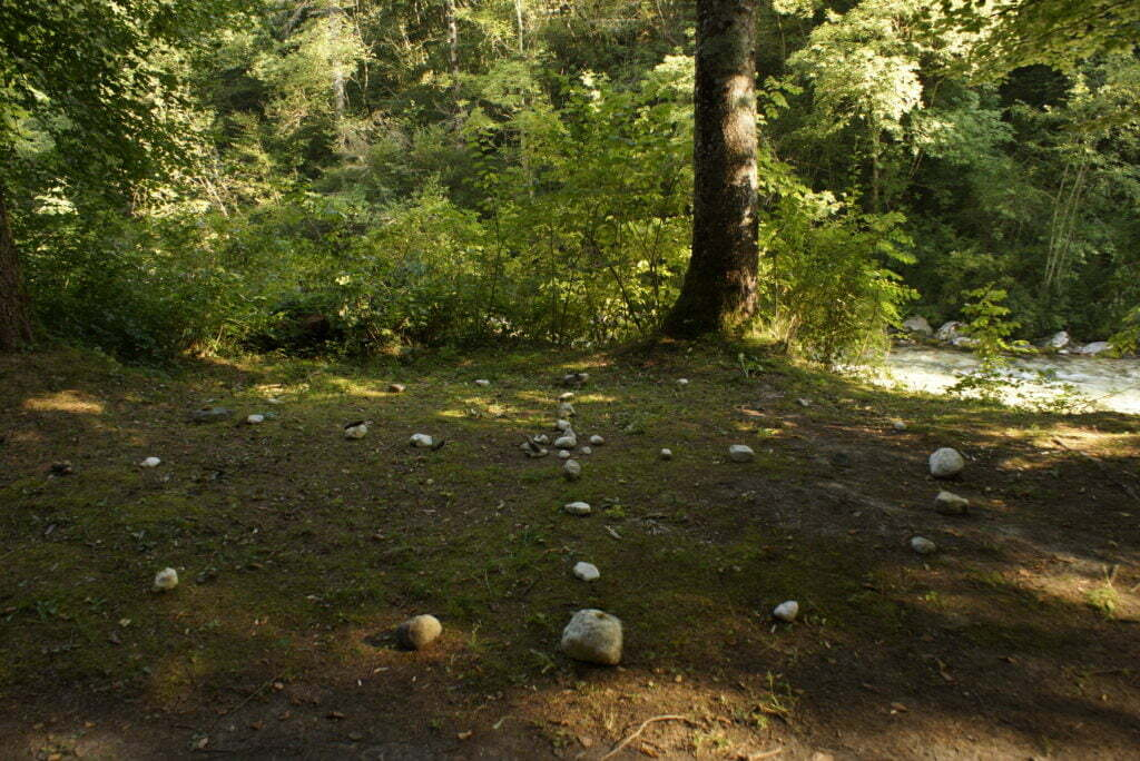 Medizinrad-im Wald Overath