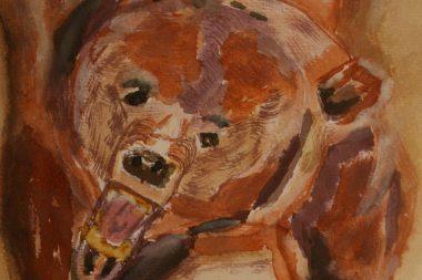 Schamanisches Krafttier Braunbär